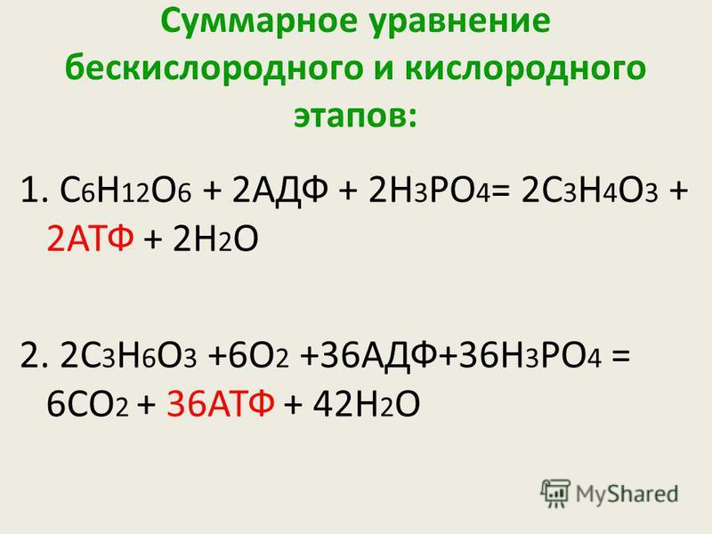 Суммарное уравнение бескислородного и кислородного этапов: 1. С 6 Н 12 О 6 + 2АДФ + 2Н 3 РО 4 = 2С 3 Н 4 О 3 + 2АТФ + 2Н 2 О 2. 2С 3 Н 6 О 3 +6О 2 +36АДФ+36Н 3 РО 4 = 6СО 2 + 36АТФ + 42Н 2 О