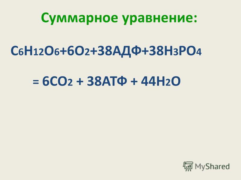 Суммарное уравнение: С 6 Н 12 О 6 +6О 2 +38АДФ+38Н 3 РО 4 = 6СО 2 + 38АТФ + 44Н 2 О