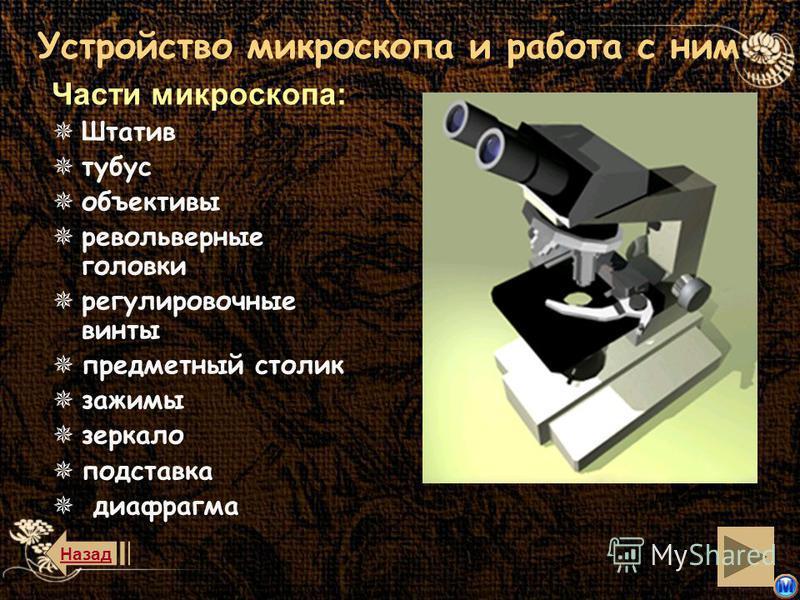 назад История открытия История открытия клетки клетки Микроскопические методы исследования методы исследования