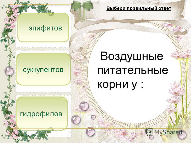эпифитов гидрофитов суккулентов Воздушные питательные корни у : Выбери правильный ответ