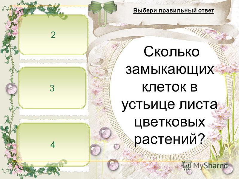 2 3 4 Сколько замыкающих клеток в устьице листа цветковых растений? Выбери правильный ответ