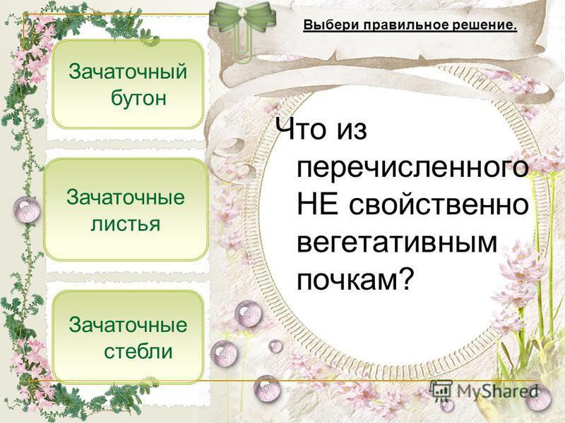 Что из перечисленного НЕ свойственно вегетативным почкам? Зачаточный бутон Зачаточные листья Выбери правильное решение. Зачаточные стебли