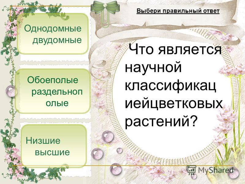 Однодомные двудомные Низшие высшие Обоеполые раздельнополые Что является научной классификацией цветковых растений? Выбери правильный ответ