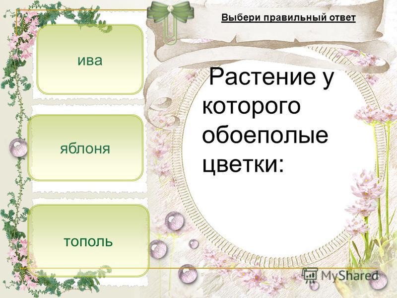 яблоня ива тополь Растение у которого обоеполые цветки: Выбери правильный ответ