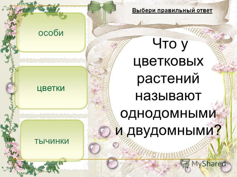 особи тычинки цветки Что у цветковых растений называют однодомными и двудомными? Выбери правильный ответ