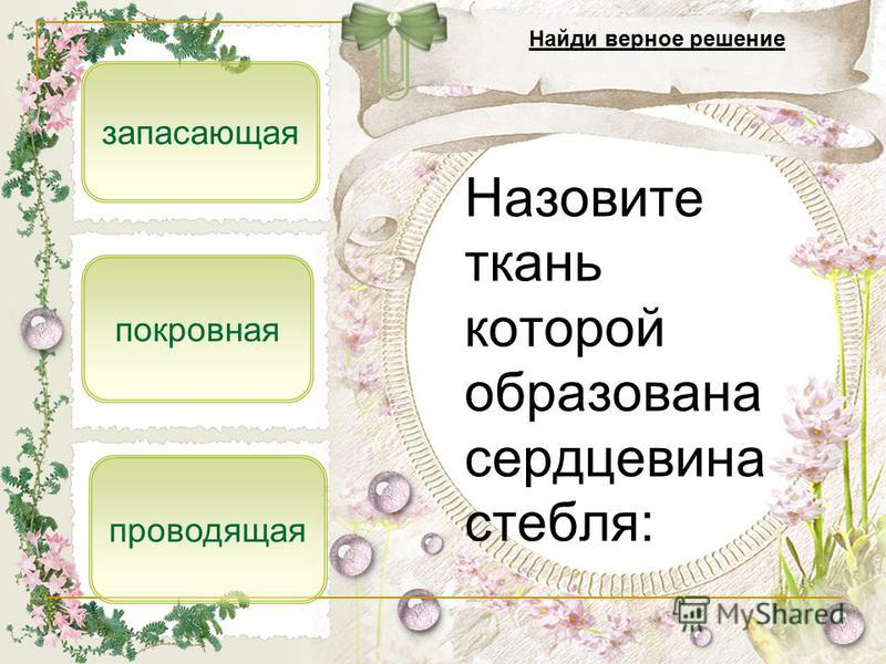 Назовите ткань которой образована сердцевина стебля: запасающая покровная Найди верное решение проводящая