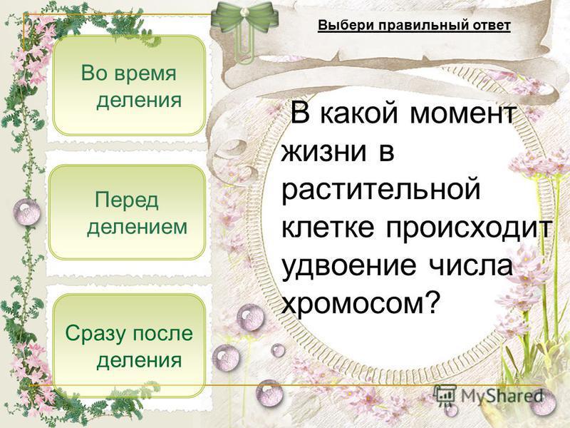 Перед делением Во время деления Сразу после деления В какой момент жизни в растительной клетке происходит удвоение числа хромосом? Выбери правильный ответ