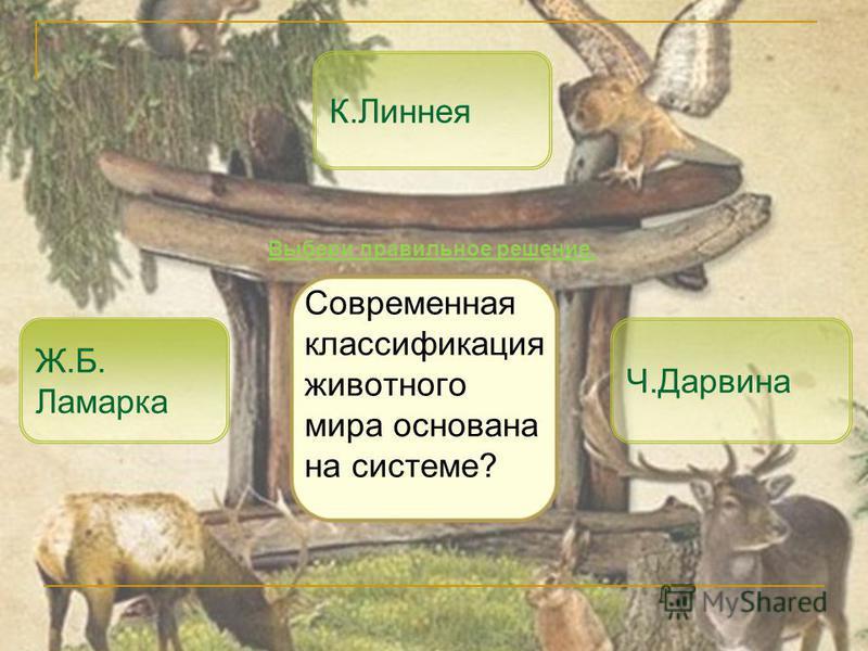 Современная классификация животного мира основана на системе? К.Линнея Ч.Дарвина Выбери правильное решение. Ж.Б. Ламарка