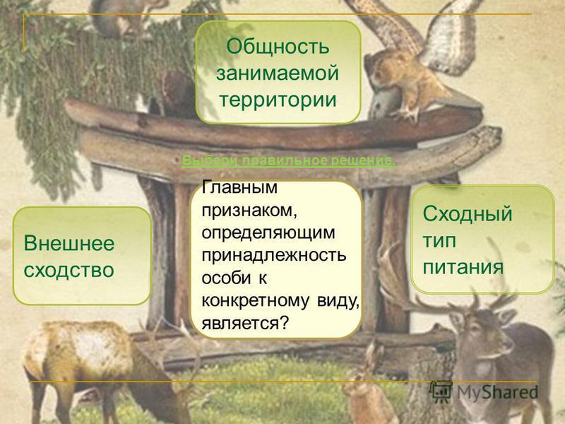 Внешнее сходство Сходный тип питания Общность занимаемой территории Главным признаком, определяющим принадлежность особи к конкретному виду, является? Выбери правильное решение.