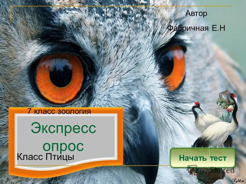Экспресс опрос Начать тест Класс Птицы Автор Фабричная Е.Н 7 класс зоология