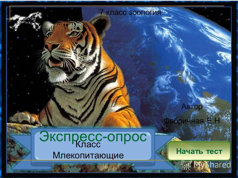 Экспресс-опрос Начать тест Класс Млекопитающие Автор Фабричная Е.Н 7 класс зоология