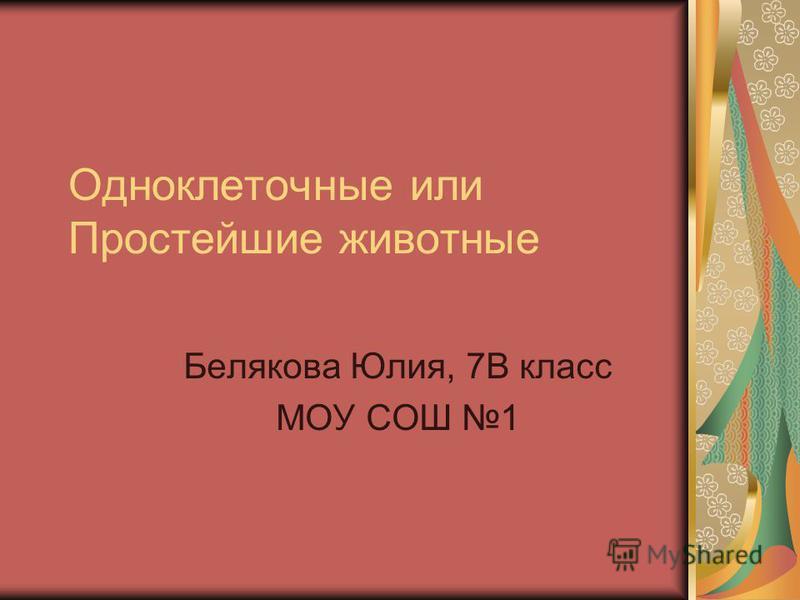 Одноклеточные или Простейшие животные Белякова Юлия, 7В класс МОУ СОШ 1