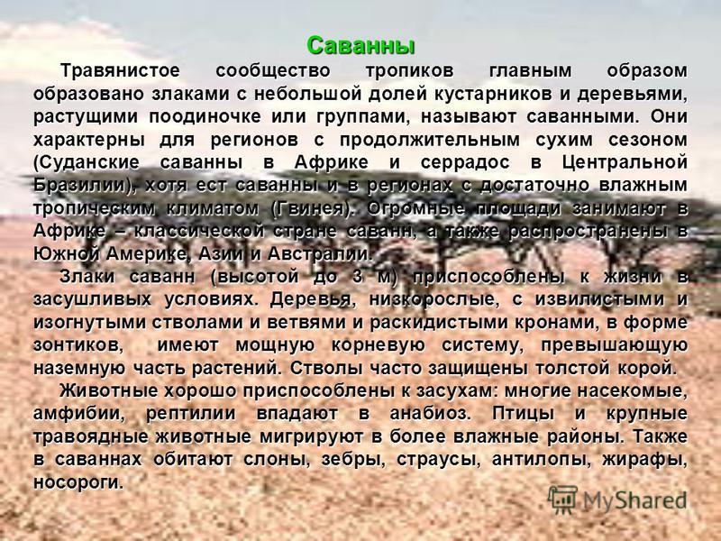 Саванны Травянистое сообщество тропиков главным образом образовано злаками с небольшой долей кустарников и деревьями, растущими поодиночке или группами, называют саванными. Они характерны для регионов с продолжительным сухим сезоном (Суданские саванн