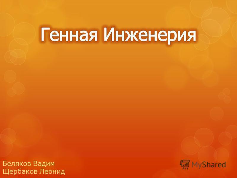 Беляков Вадим Щербаков Леонид