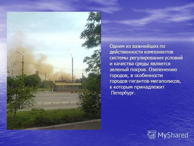 Одним из важнейших по действенности компонентов системы регулирования условий и качества среды является зеленый покров. Озеленению городов, в особенности городов-гигантов-мегаполисов, к которым принадлежит Петербург.