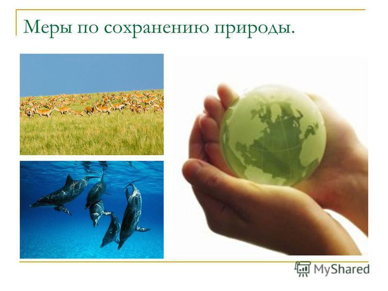 Меры по сохранению природы.