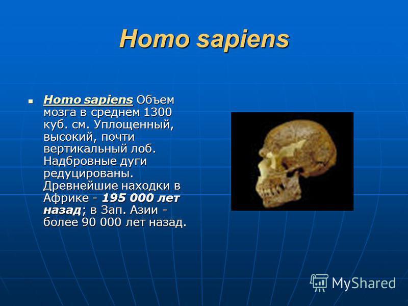 Homo sapiens Homo sapiens Объем мозга в среднем 1300 куб. см. Уплощенный, высокий, почти вертикальный лоб. Надбровные дуги редуцированы. Древнейшие находки в Африке - 195 000 лет назад; в Зап. Азии - более 90 000 лет назад. Homo sapiens Объем мозга в