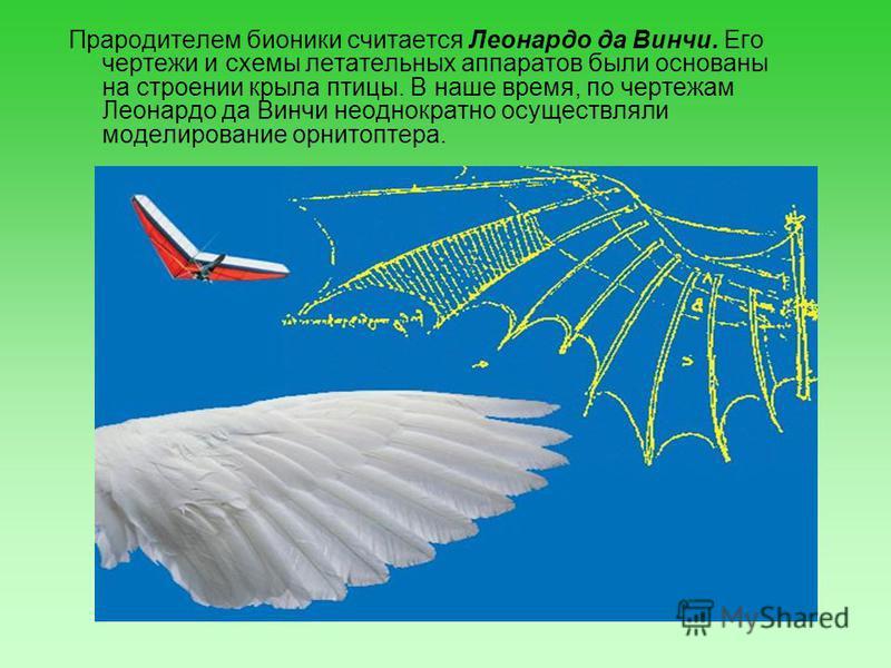 Прародителем бионики считается Леонардо да Винчи. Его чертежи и схемы летательных аппаратов были основаны на строении крыла птицы. В наше время, по чертежам Леонардо да Винчи неоднократно осуществляли моделирование орнитоптера.