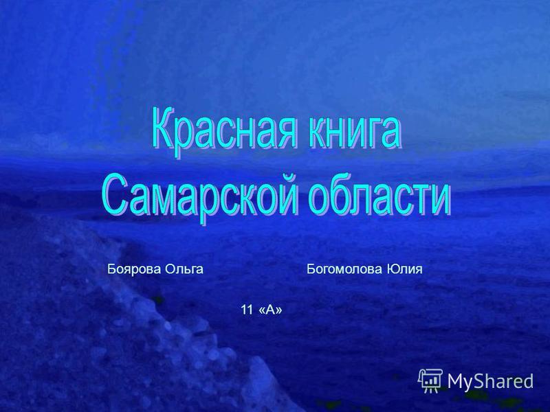 Боярова Ольга Богомолова Юлия 11 «А»