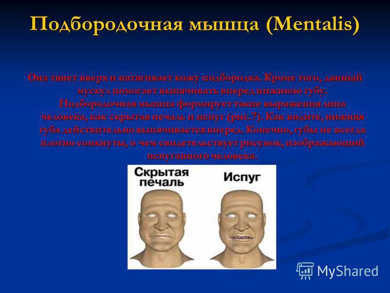 Подбородочная мышца (Mentalis) Она тянет вверх и натягивает кожу подбородка. Кроме того, данный мускул помогает выпячивать вперед нижнюю губу. Подбородочная мышца формирует такие выражения лица человека, как скрытая печаль и испуг (рис.7). Как видите