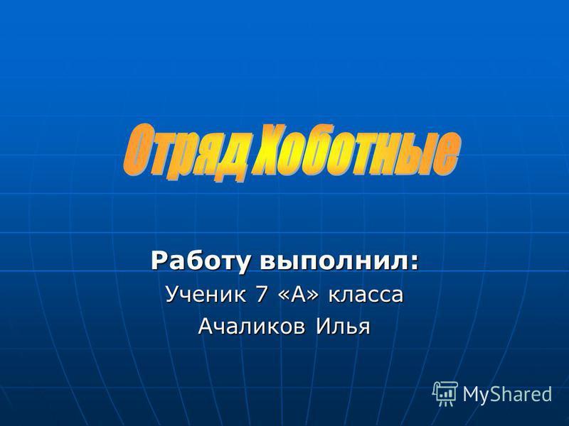 Работу выполнил: Ученик 7 «А» класса Ачаликов Илья