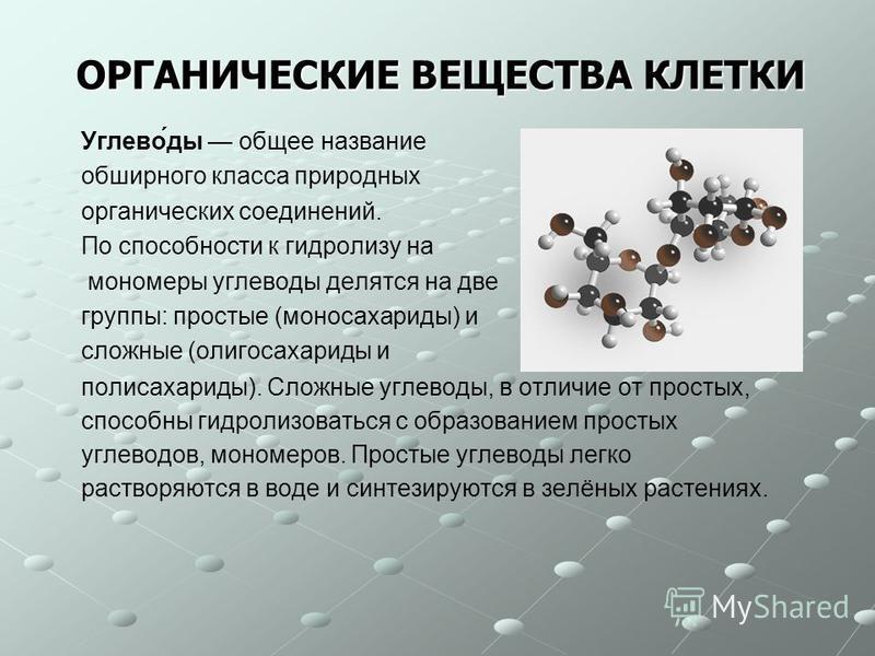 ОРГАНИЧЕСКИЕ ВЕЩЕСТВА КЛЕТКИ Углево́ты общее название обширного класса природных органических соединений. По способности к гидролизу на мономеры углевоты делятся на две группы: простые (моносахариты) и сложные (олигосахариты и полисахариты). Сложные