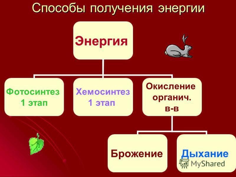 Способы получения энергии Энергия Фотосинтез 1 этап Хемосинтез 1 этап Окисление органич. в-в Брожение Дыхание