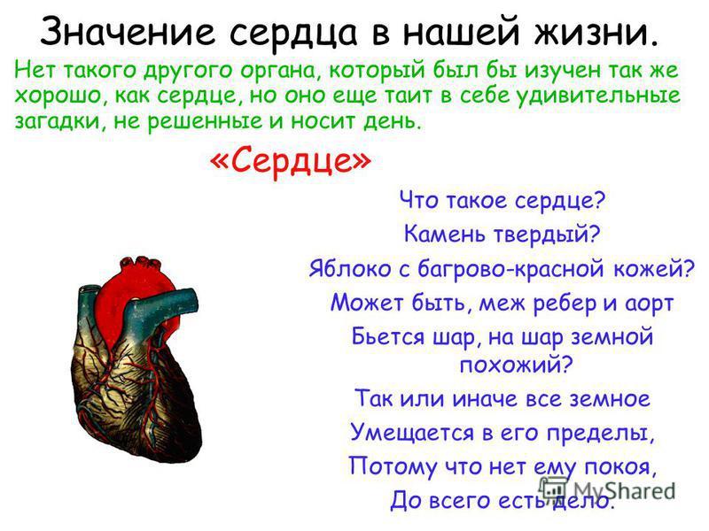 Остановка артериального кровотечения