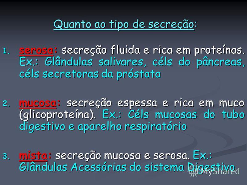 Quanto ao tipo de secreção: Quanto ao tipo de secreção: 1. serosa: secreção fluida e rica em proteínas. Ex.: Glândulas salivares, céls do pâncreas, céls secretoras da próstata 2. mucosa: secreção espessa e rica em muco (glicoproteína). Ex.: Céls muco