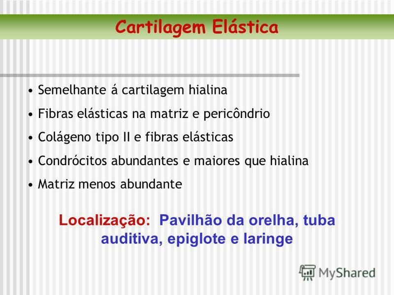 Semelhante á cartilagem hialina Fibras elásticas na matriz e pericôndrio Colágeno tipo II e fibras elásticas Condrócitos abundantes e maiores que hialina Matriz menos abundante Localização: Pavilhão da orelha, tuba auditiva, epiglote e laringe Cartil