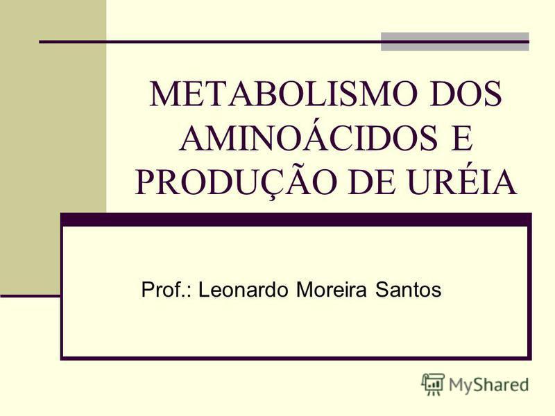 METABOLISMO DOS AMINOÁCIDOS E PRODUÇÃO DE URÉIA Prof.: Leonardo Moreira Santos