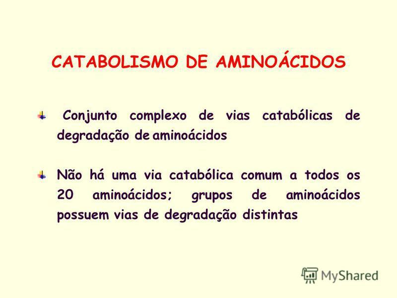 Conjunto complexo de vias catabólicas de degradação de aminoácidos Não há uma via catabólica comum a todos os 20 aminoácidos; grupos de aminoácidos possuem vias de degradação distintas CATABOLISMO DE AMINOÁCIDOS
