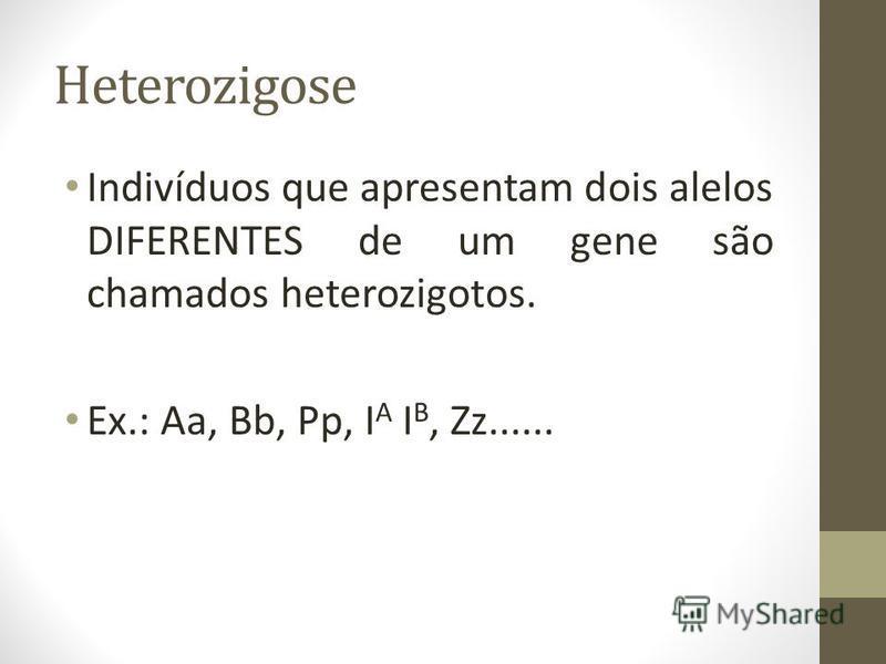 Heterozigose Indivíduos que apresentam dois alelos DIFERENTES de um gene são chamados heterozigotos. Ex.: Aa, Bb, Pp, I A I B, Zz......