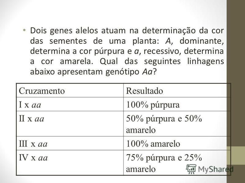 Dois genes alelos atuam na determinação da cor das sementes de uma planta: A, dominante, determina a cor púrpura e a, recessivo, determina a cor amarela. Qual das seguintes linhagens abaixo apresentam genótipo Aa? CruzamentoResultado I x aa100% púrpu