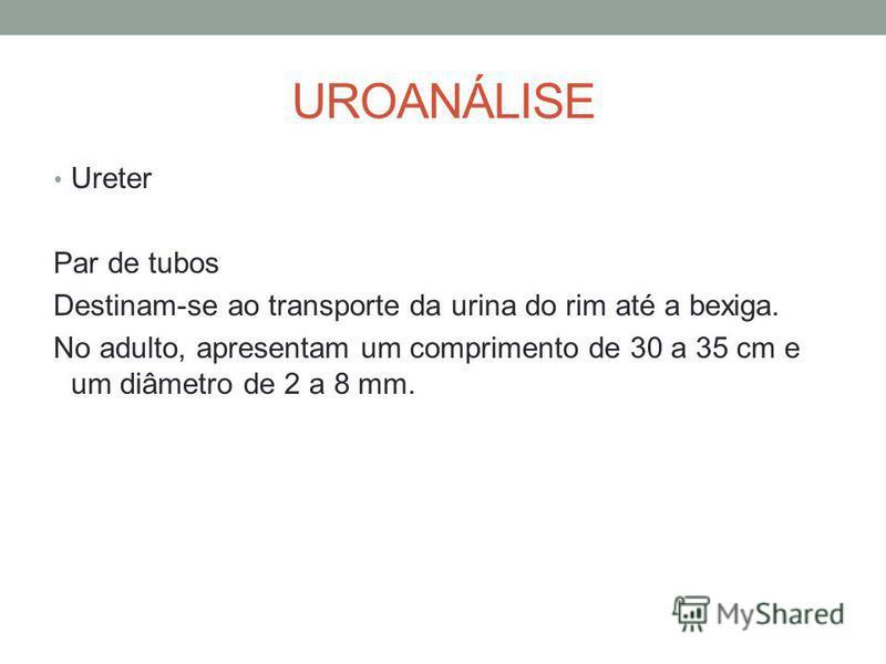 UROANÁLISE Ureter Par de tubos Destinam-se ao transporte da urina do rim até a bexiga. No adulto, apresentam um comprimento de 30 a 35 cm e um diâmetro de 2 a 8 mm.
