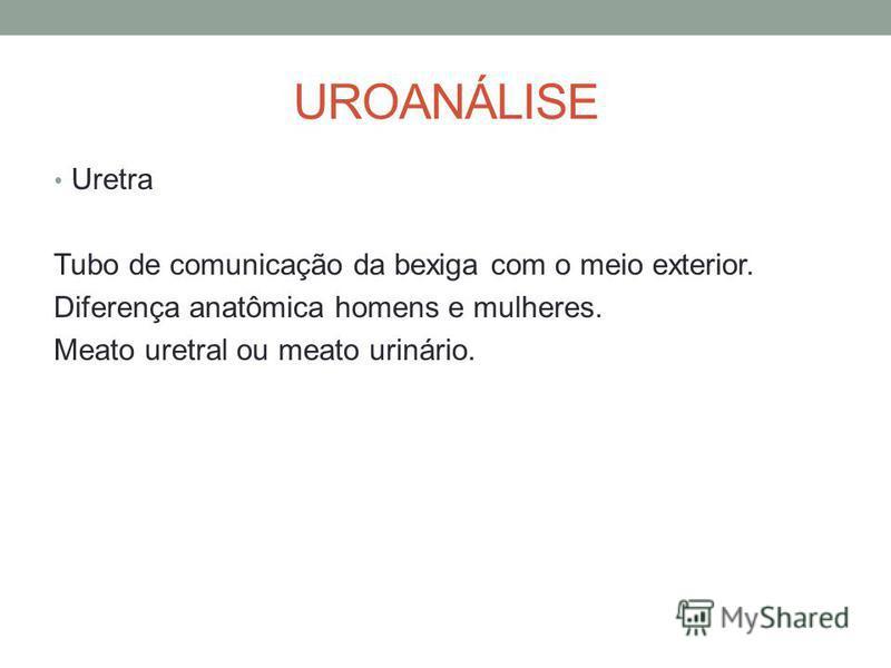 UROANÁLISE Uretra Tubo de comunicação da bexiga com o meio exterior. Diferença anatômica homens e mulheres. Meato uretral ou meato urinário.