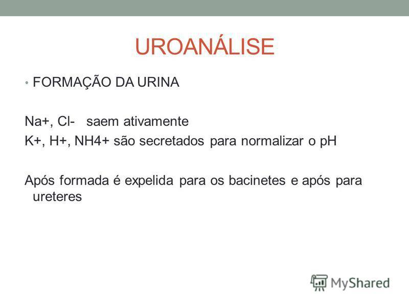UROANÁLISE FORMAÇÃO DA URINA Na+, Cl- saem ativamente K+, H+, NH4+ são secretados para normalizar o pH Após formada é expelida para os bacinetes e após para ureteres