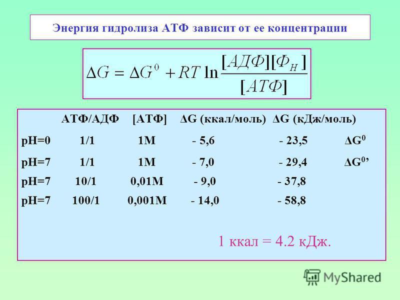 Энергия гидролиза АТФ зависит от ее концентрации АТФ/АДФ [АТФ] ΔG (ккал/моль) ΔG (к Дж/моль) рН=0 1/1 1М - 5,6 - 23,5 ΔG 0 рН=7 1/1 1М - 7,0 - 29,4 ΔG 0 рН=7 10/1 0,01М - 9,0 - 37,8 рН=7 100/1 0,001М - 14,0 - 58,8 1 ккал = 4.2 к Дж.