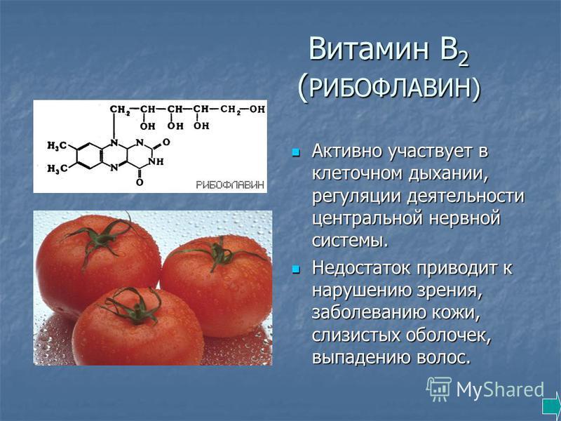 Витамин В 2 ( РИБОФЛАВИН) Активно участвует в клеточном дыхании, регуляции деятельности центральной нервной системы. Активно участвует в клеточном дыхании, регуляции деятельности центральной нервной системы. Недостаток приводит к нарушению зрения, за