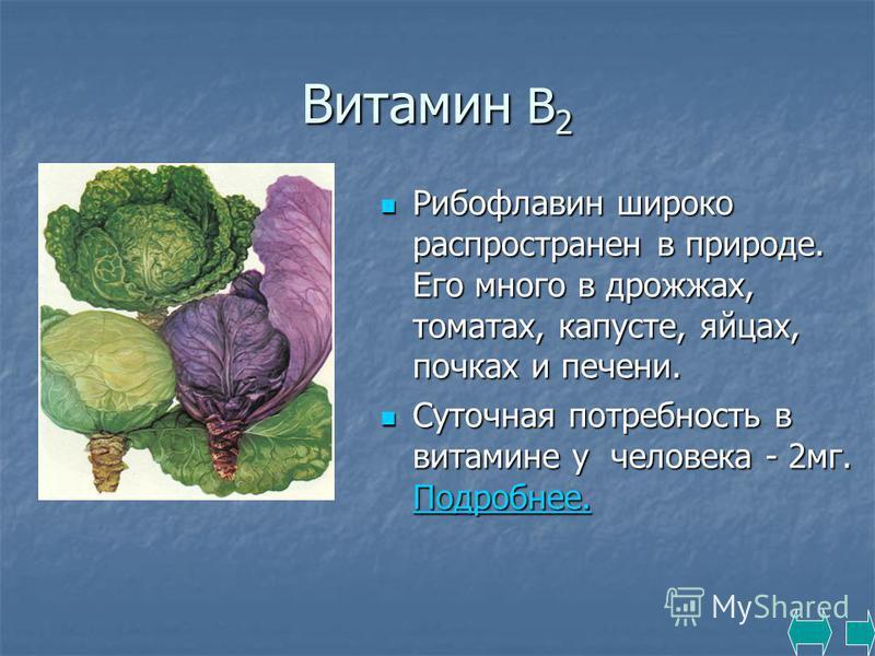 Витамин В 2 Рибофлавин широко распространен в природе. Его много в дрожжах, томатах, капусте, яйцах, почках и печени. Рибофлавин широко распространен в природе. Его много в дрожжах, томатах, капусте, яйцах, почках и печени. Суточная потребность в вит