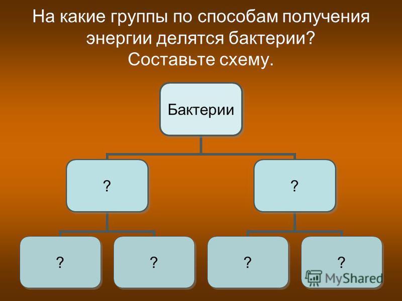 На какие группы по способам получения энергии делятся бактерии? Составьте схему. Бактерии ? ?? ? ??