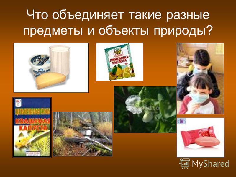 Что объединяет такие разные предметы и объекты природы?