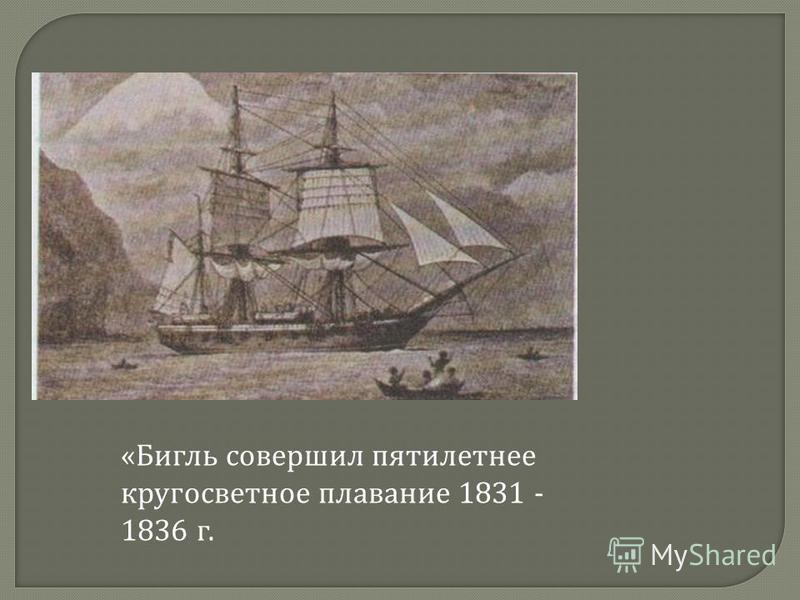 «Бигль совершил пятилетнее кругосветное плавание 1831 - 1836 г.