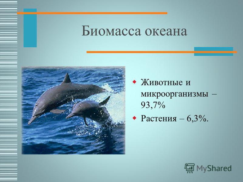 Биомасса суши Растения - 99,2% Животные и микроорганизмы – 0,8%.