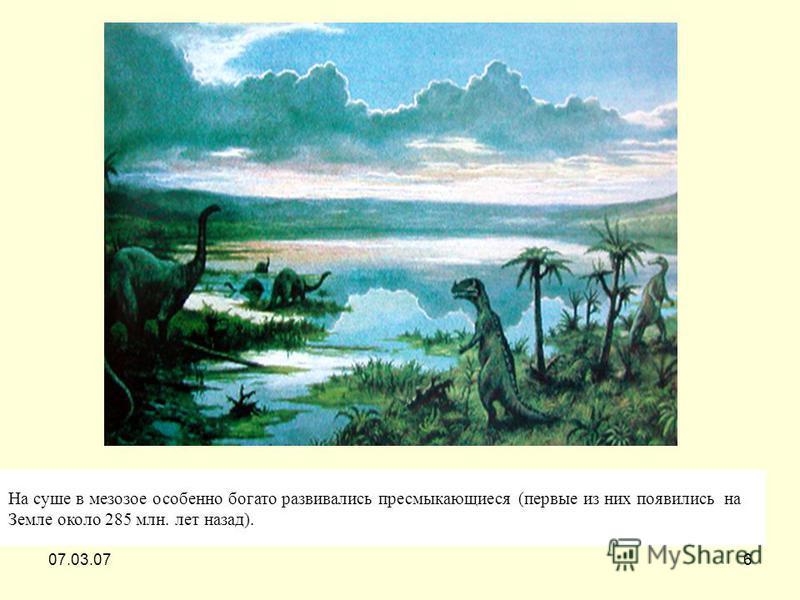 07.03.076 На суше в мезозое особенно богато развивались пресмыкающиеся (первые из них появились на Земле около 285 млн. лет назад).