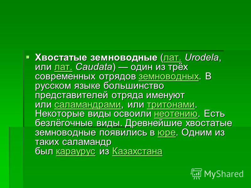 Хвостатые земноводные (лат. Urodela, или лат. Caudata) один из трёх современных отрядов земноводных. В русском языке большинство представителей отряда именуют или саламандрами, или тритонами. Некоторые виды освоили неотению. Есть безлёгочные виды. Др