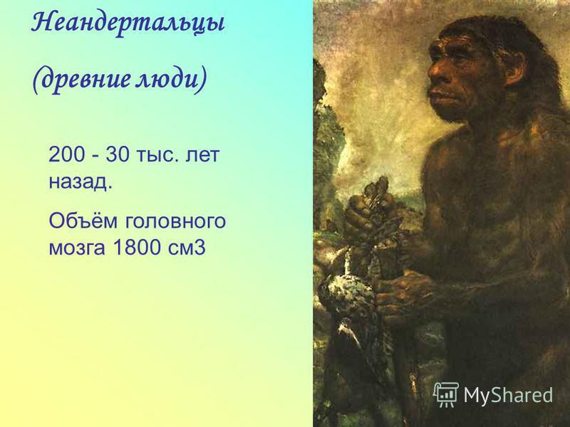 Неандертальцы (древние люди) 200 - 30 тыс. лет назад. Объём головного мозга 1800 см 3