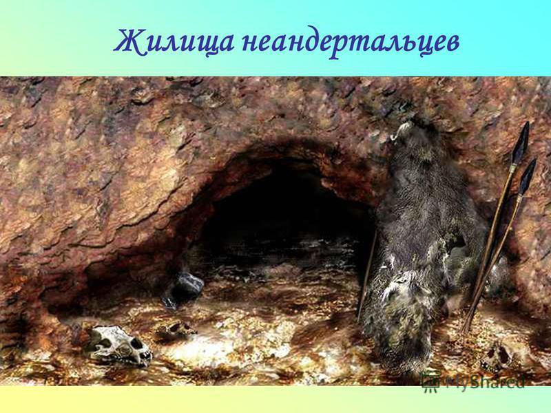 Жилища неандертальцев