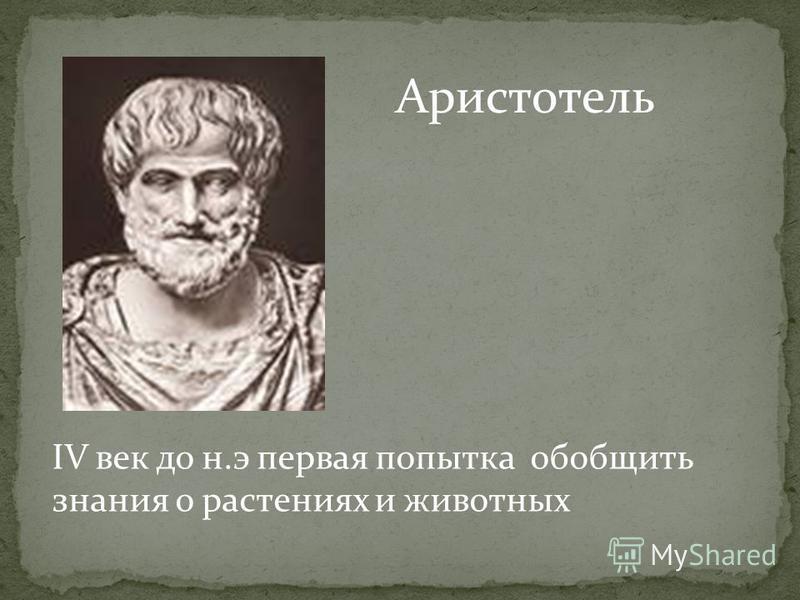 IV век до н.э первая попытка обобщить знания о растениях и животных Аристотель