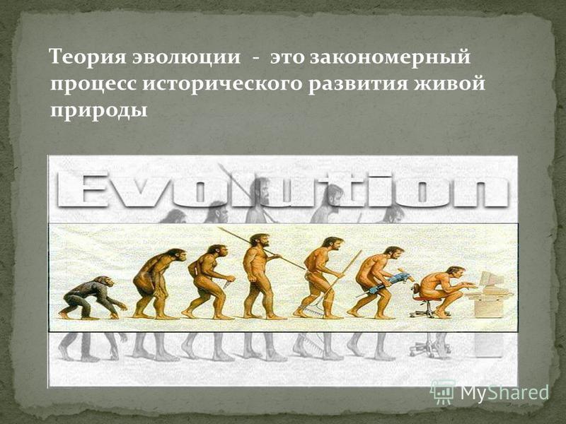 Теория эволюции - это закономерный процесс исторического развития живой природы